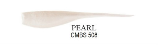 CMBS 508  PEARL